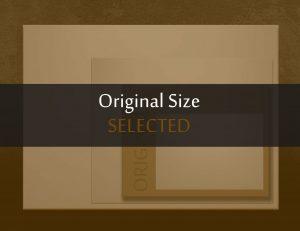 Original Size